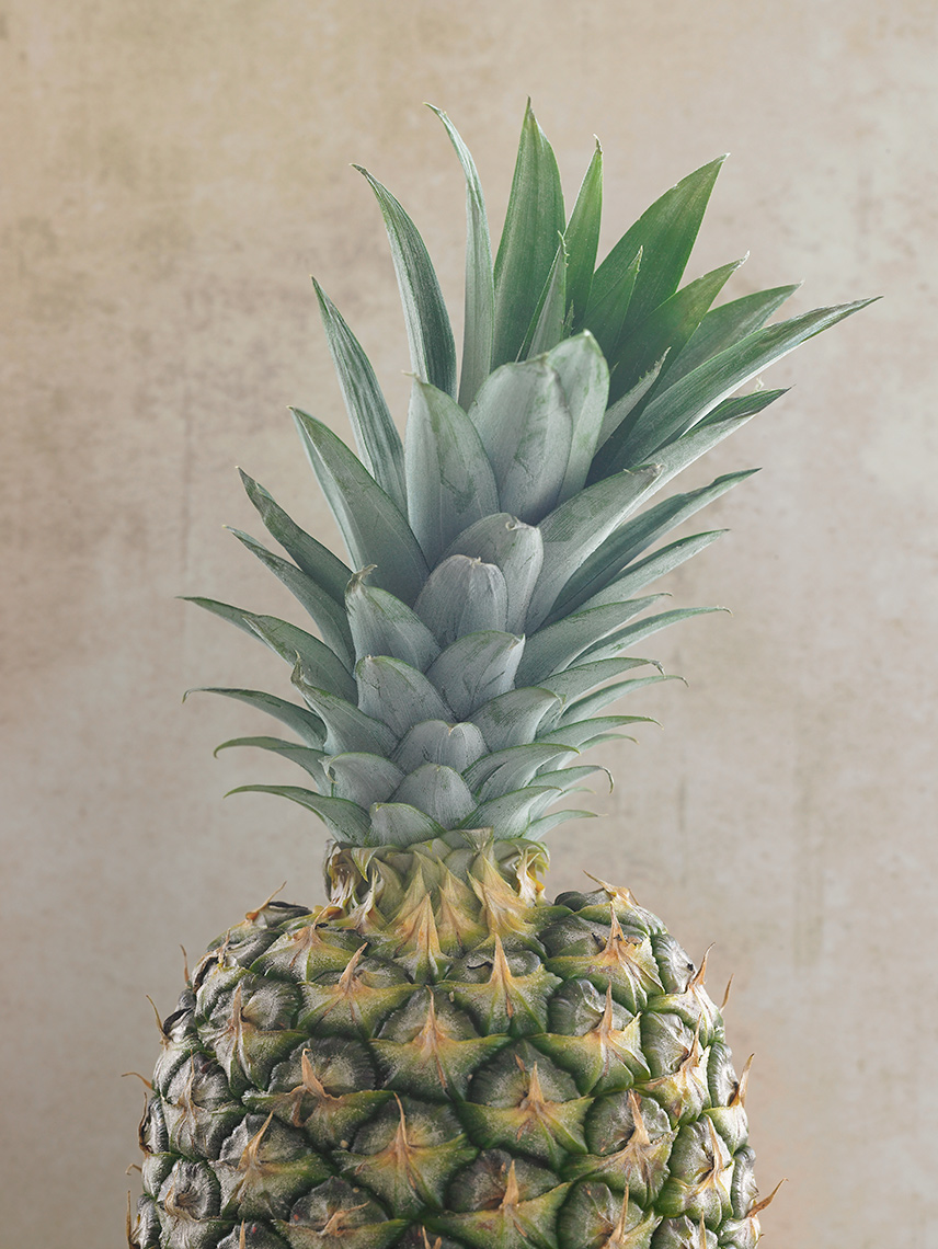 pinapple-top